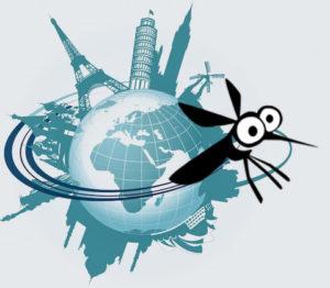 moustique-autour-du-monde